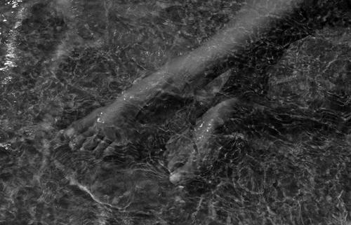 Rebillard-Emulsion-2011-19ij-07